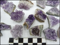 Amethyst crystals mini 50x